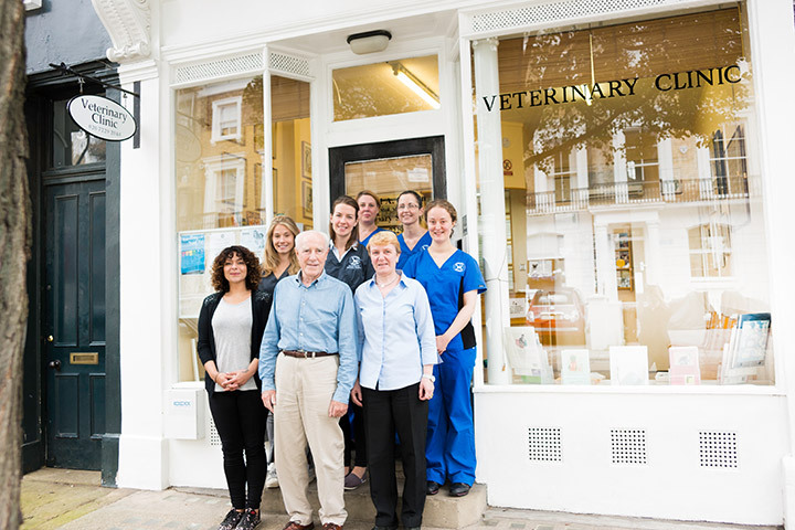 Say hello to our team in Bayswater
