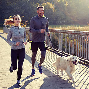 Get fit with your dog in Bayswater